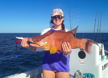 Captiva Fishing, Hogfish, November 25, 2016