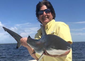 Captiva Fishing, Blacktip Shark, July 6!