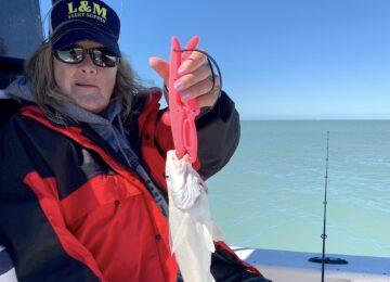 Whiting, Sanibel Island Fishing, Catch & Release, Captiva Island, Friday, February 8, 2019.