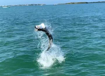 Tarpon Jumping , Sanibel Island Fishing, Catch & Release, Captiva Island, Friday, May 31, 2019.